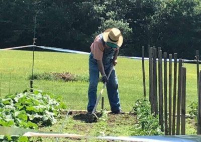 Man Doing Some Gardening Work